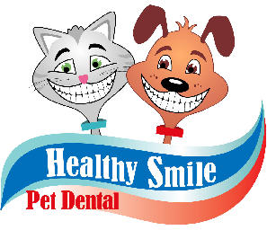 Anesthesia  & Sedative Free Professional Teeth Cleaning